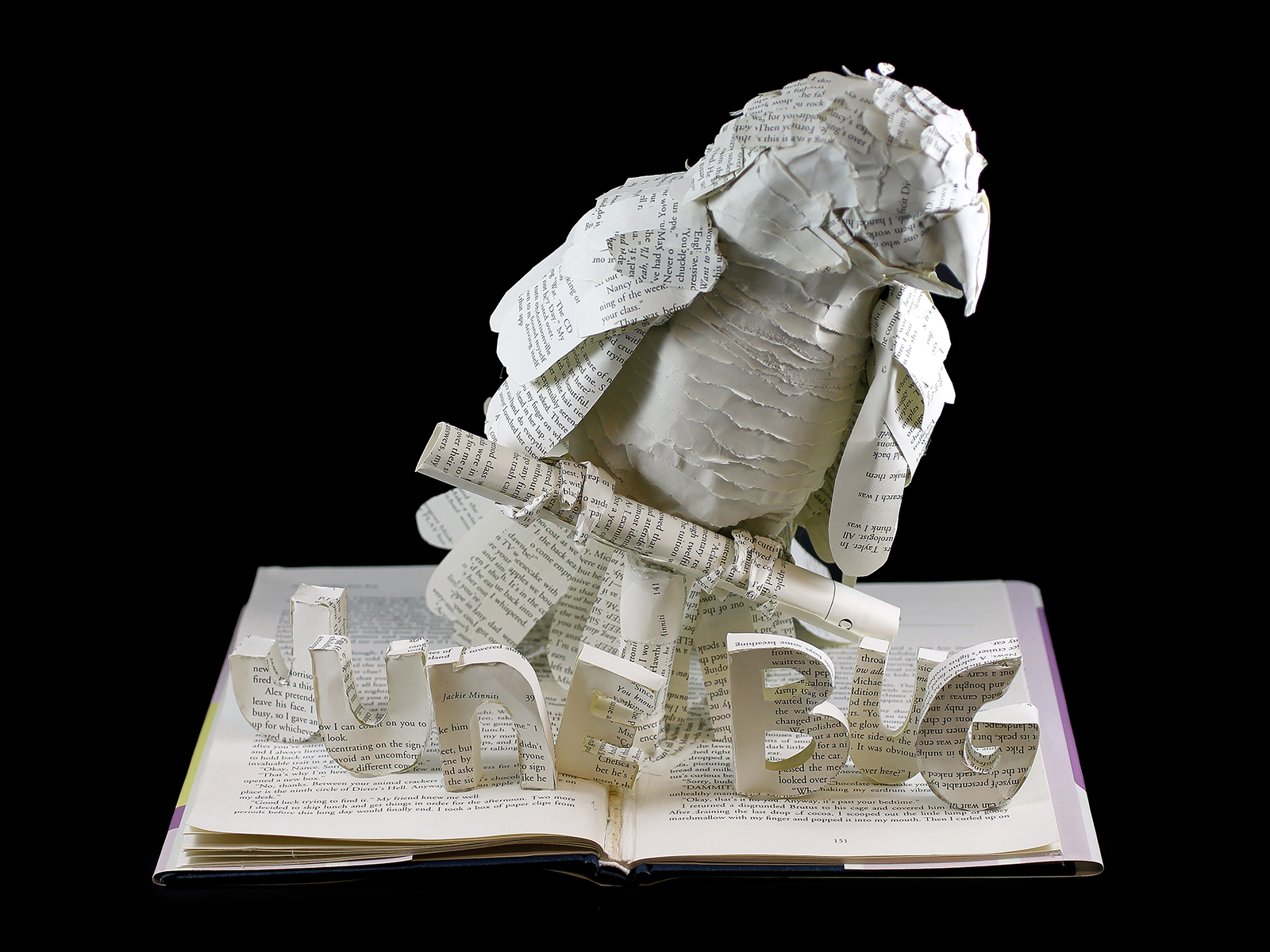 Project Junebug macaw book sculpture by jamie b. hannigan