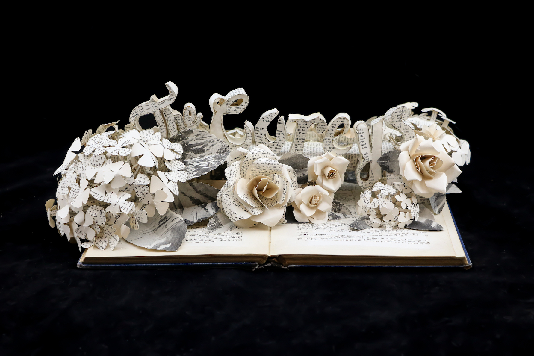 Book Sculpture: The Coreys