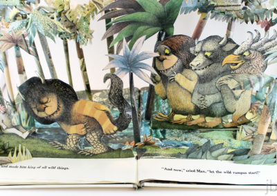 jbh - where the wild things are - from above